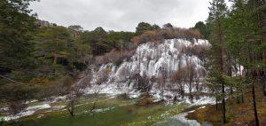 Cuervo Albarracín